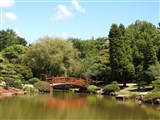 Japanese Gardens At Toowoomba
