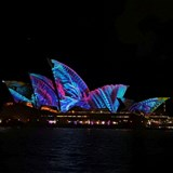 Vivid Lights Spectacular Dinner Cruise