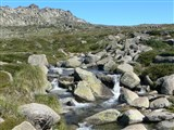 Snowy Valley Way And Kosciuszko National Park