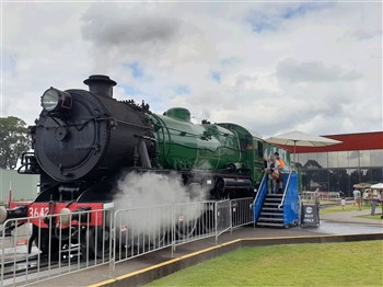 Maitland Steam Festival