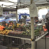 Manly Harbour Village Farmers Market